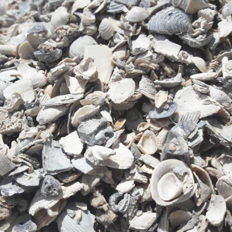 Small Washed Shell - Southern Landscaping Materials