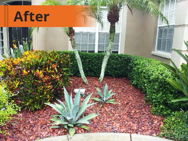 After Mulch To Rock