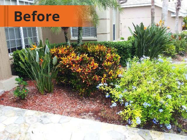 Before Mulch To Rock