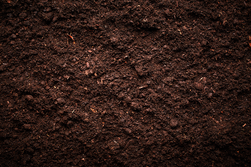 why use potting soil