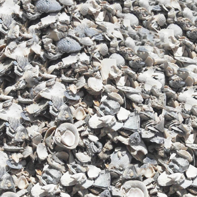 Washed crushed shell landscaping shell southern for Shell driveway calculator