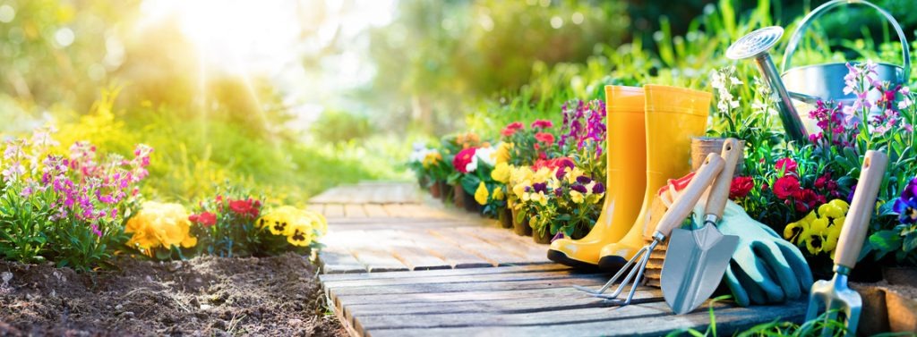 4 Different Types Of Mulch To Use In Your Garden Southern