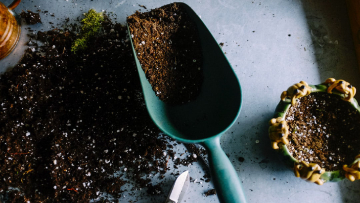 when to use potting soil