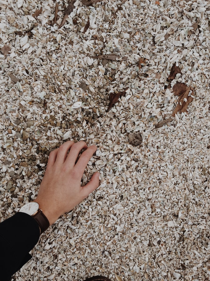 crushed shell ground covering
